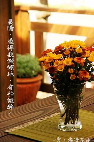 桌上菊花.jpg