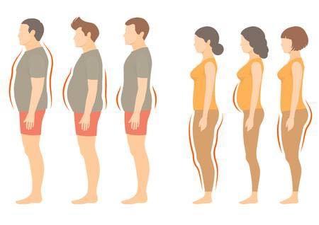 肥胖體質.jpg