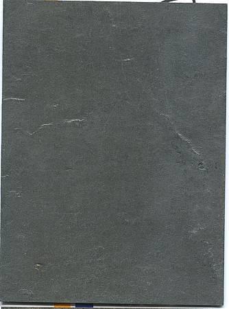 SL110