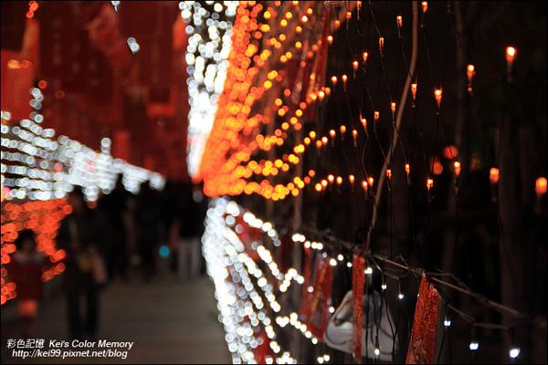 2010台中元宵燈會-虎躍99-IMG_6811.jpg
