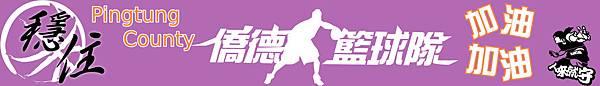 basketball-team-logo18 (1).jpg
