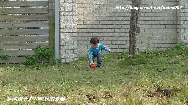 nEO_IMG_P1220443.jpg