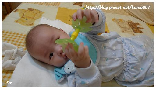 nEO_IMG_P1050109.jpg