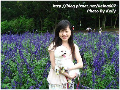 IMG_1676-1_nEO_IMG.jpg