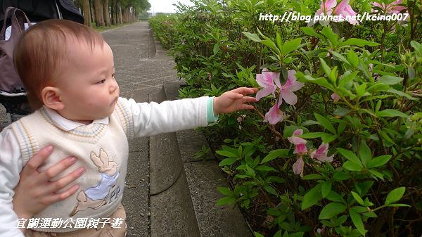 nEO_IMG_P1110811-1.jpg