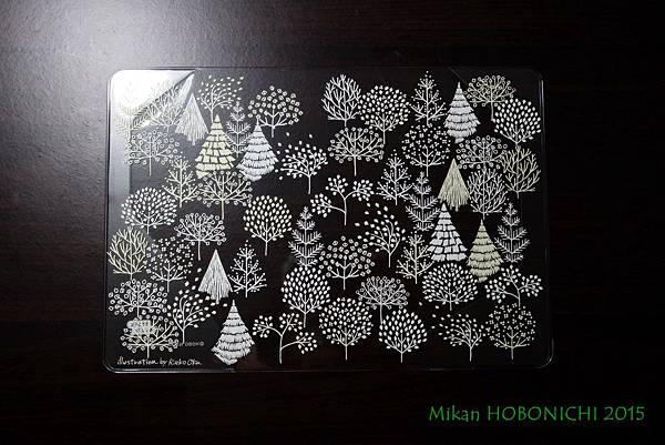 HOBONICHI-08.JPG