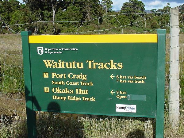 Waitutu Tracks (Hump Ridge Track)-1.JPG