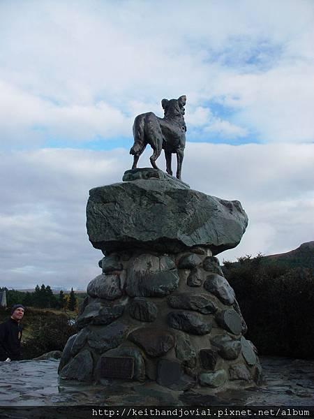 Mackenzie dog-1.JPG