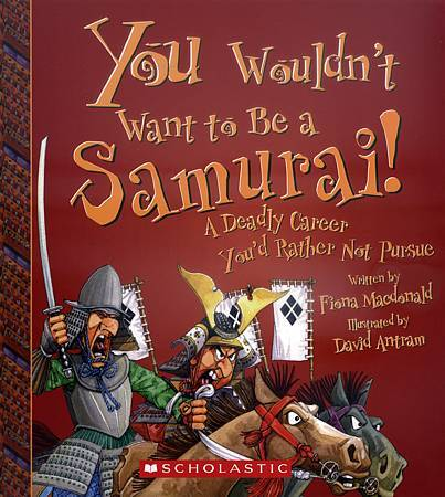 YOU WOULDN'T WANT TO BE A SAMURAI - COVER