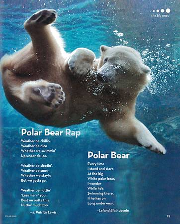 BOOK OF ANIMAL POETRY - PAGE 29.jpg