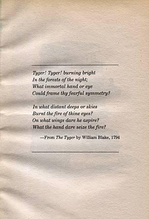 THE TYGER - 詩.jpg
