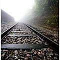 阿里山鐵道.jpg