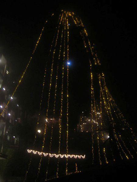 016聖誕樹夜景