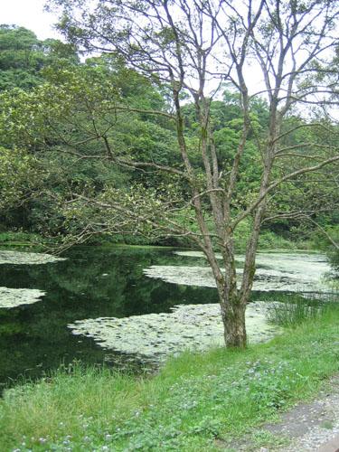 03_福山湖景