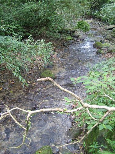 07_福山溪流