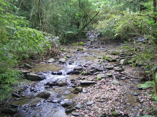 08_福山溪流