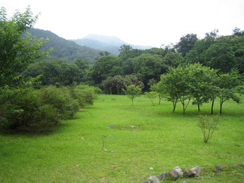 09_福山草坪
