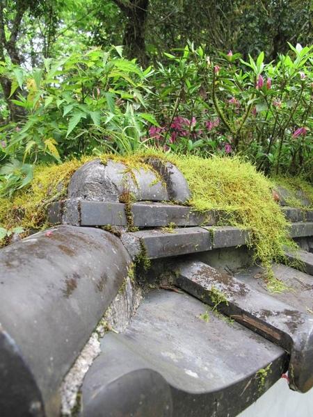 明池森林遊樂園27.jpg