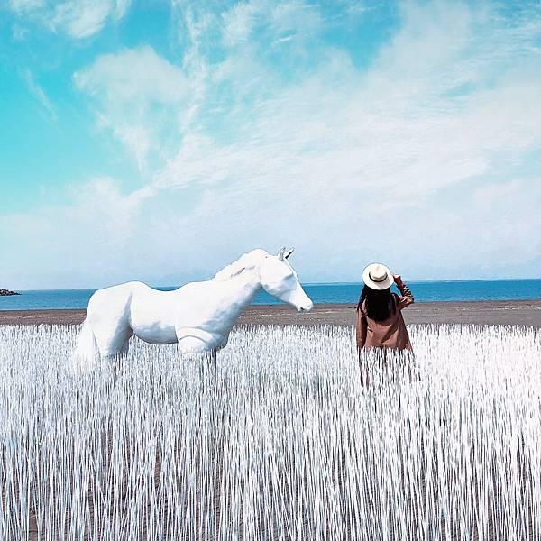 1553692440 2584951019 n - 台南最新夢幻打卡景點│2019漁光島藝術節│超夢幻海島新樂園!
