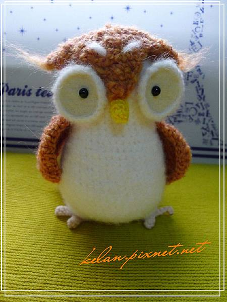 owl02.jpg