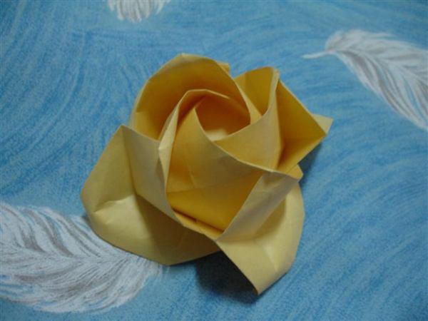 第一朵黃色玫瑰
