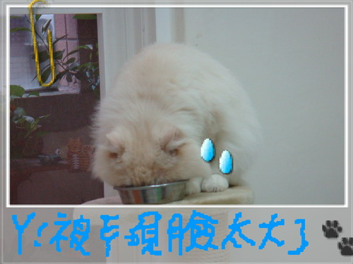 大大日記 410.jpg