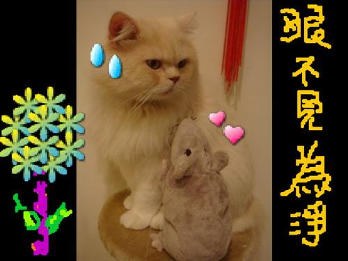 大大日記 423.jpg