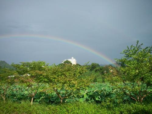 有看到這2道彩虹.JPG