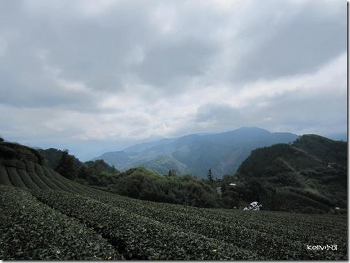 2013.9.16奮起湖 009