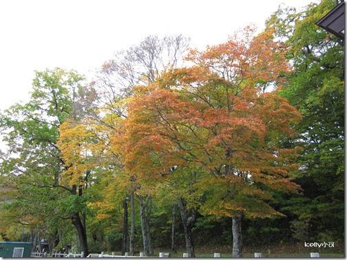 2013北海道10.21 026