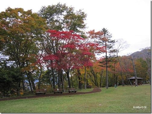 2013北海道10.21 031