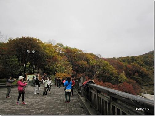 2013北海道10.22 019