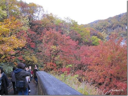 2013北海道10.22 007