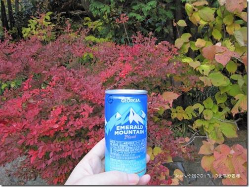 2013北海道10.23 082
