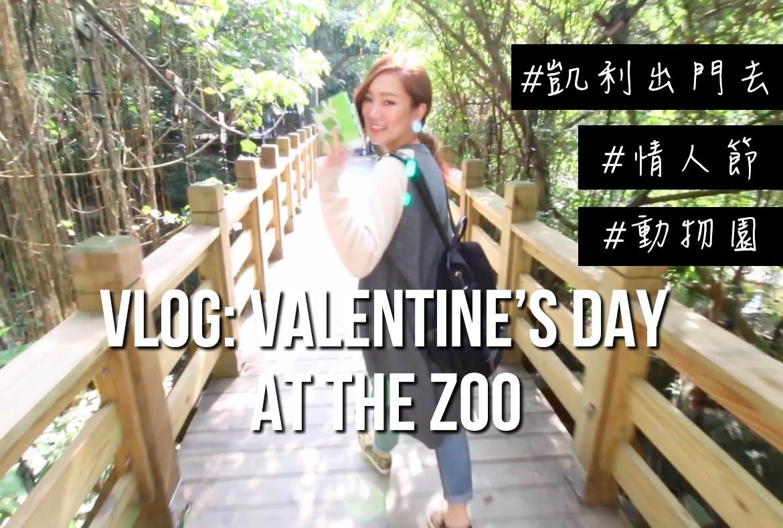 vlog blog