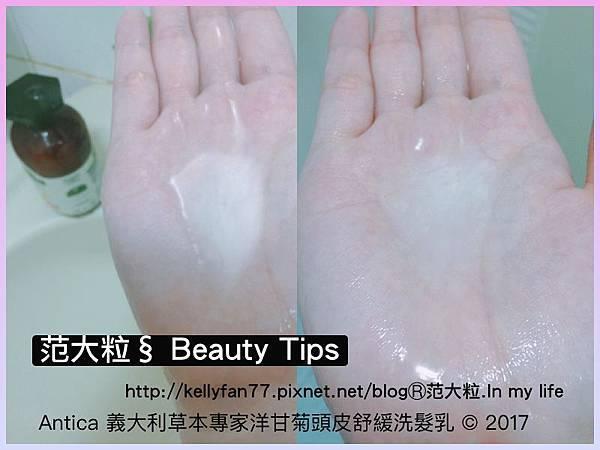 Antica洋甘菊頭皮舒緩洗髮乳05.jpg