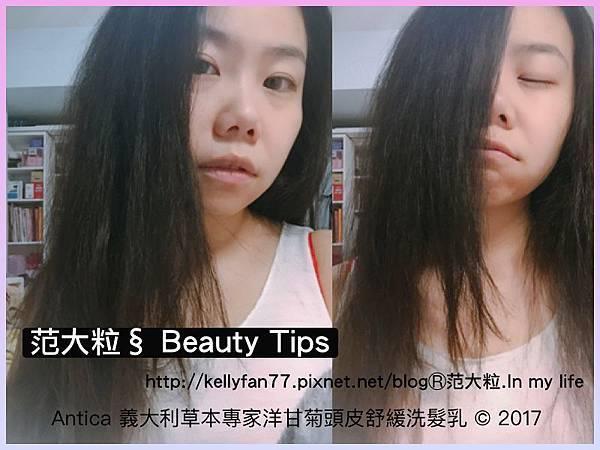 Antica洋甘菊頭皮舒緩洗髮乳08.jpg