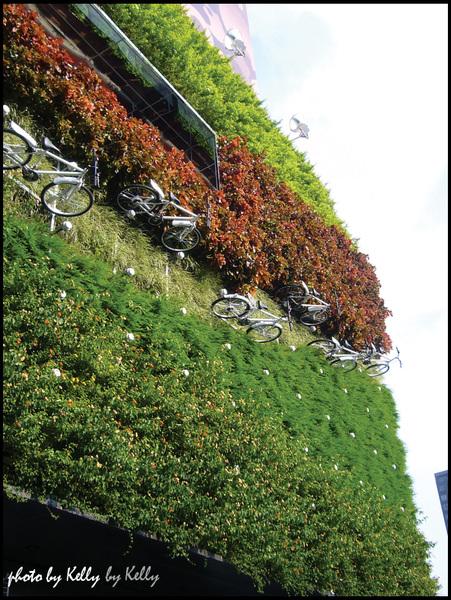 12-勤美誠品左邊腳踏車踏青牆.jpg