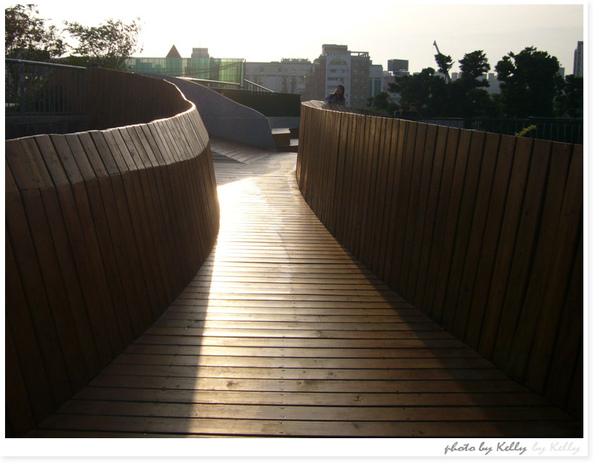 台中文心森林公園-11.jpg