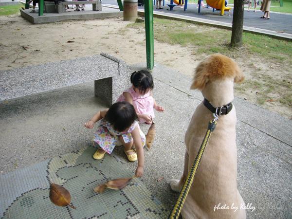 台中_美國國慶園遊會-08.jpg