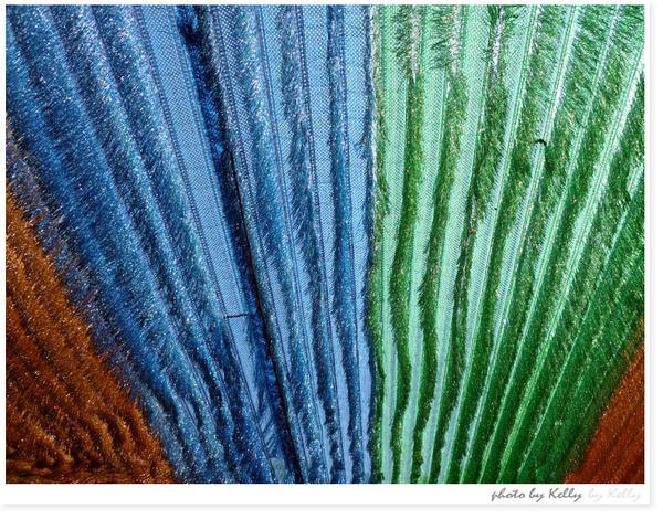 LeicaX1-63.jpg