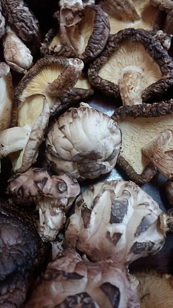 5乾香菇.jpg