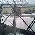 080111雪景