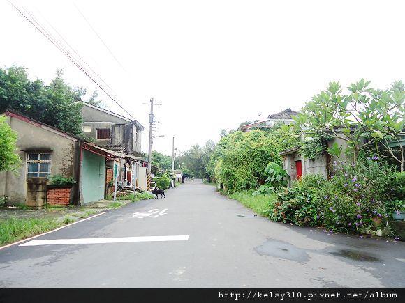 黃埔新村12
