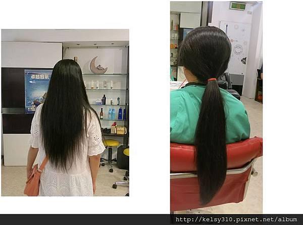 頭髮2.jpg