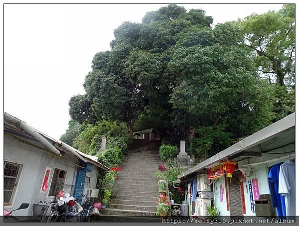 玉里神社4.jpg