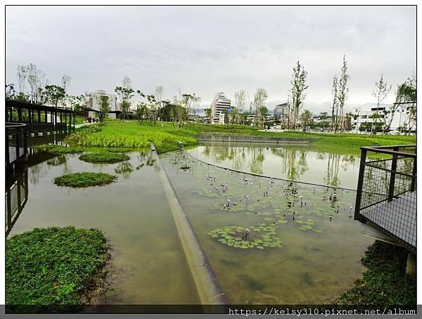 新新公園12.jpg