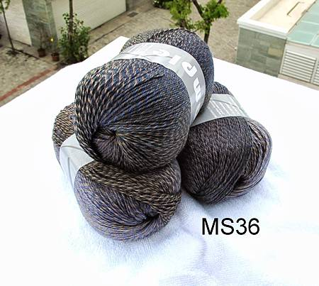 MS36-2.jpg
