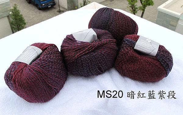 MS20-1