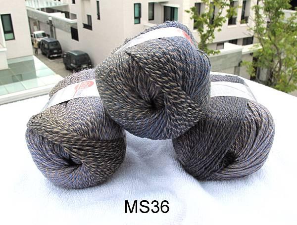 MS36-1